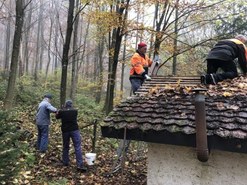 Dachsanierung Waldhüsli